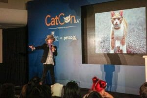 Photo credit: Jago Soria/CatConLA
