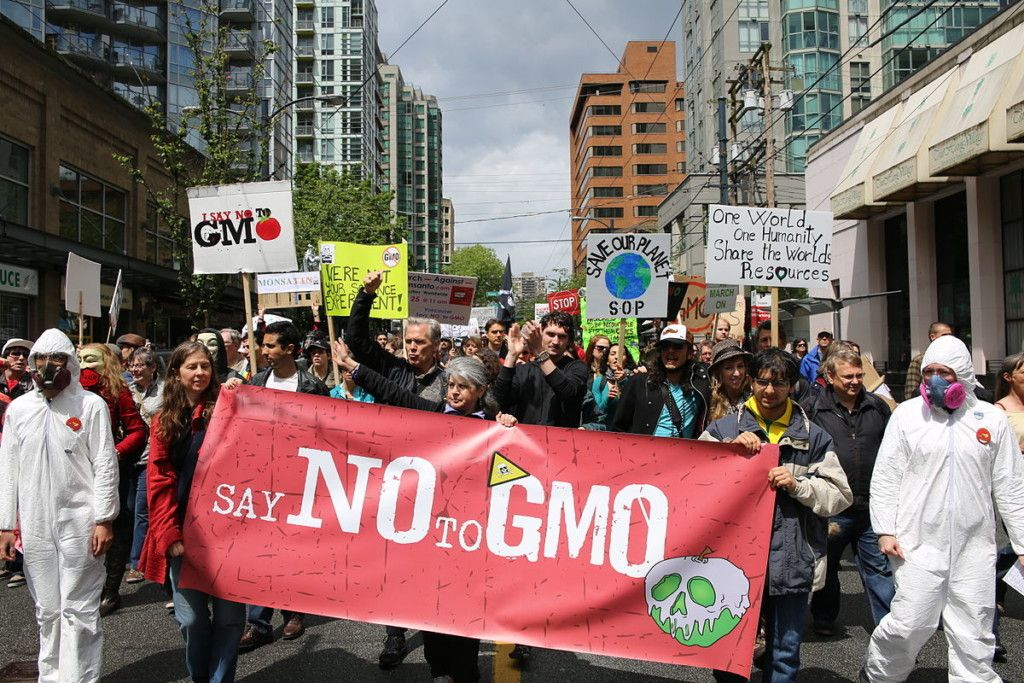 Protestors marching in Vancouver against Monsanto and in favor of GMO labeling