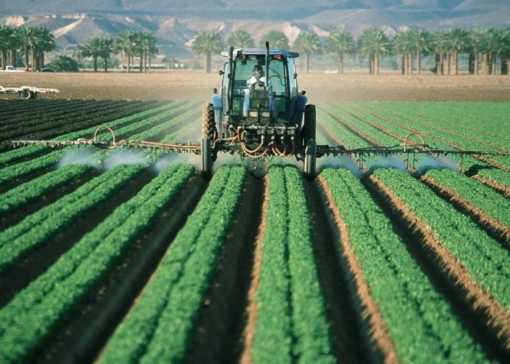 Farmer sprays pesticides on GMO crops