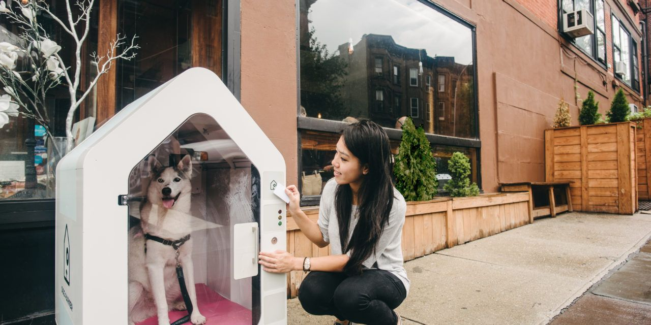 With This Invention, You Never Have to Tie Your Dog In Front of the Store Again