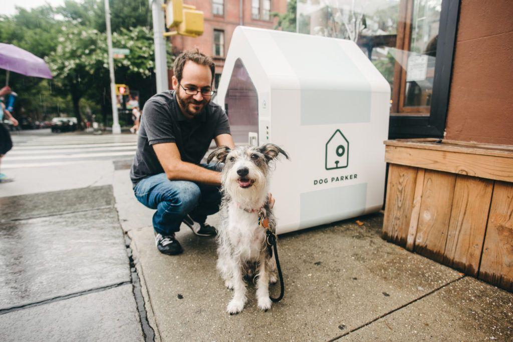 Dog Parker in Brooklyn, New York.