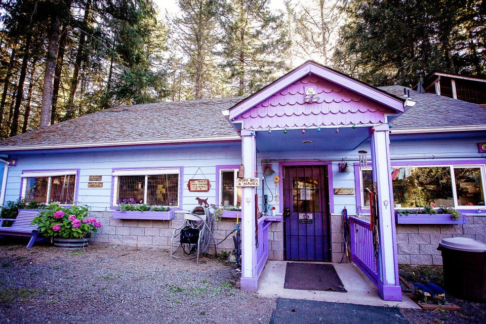 Cottage at Luvable Dog Rescue