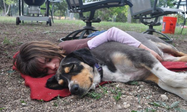 New Study: Having a Dog Makes You a Better (and Healthier) Human