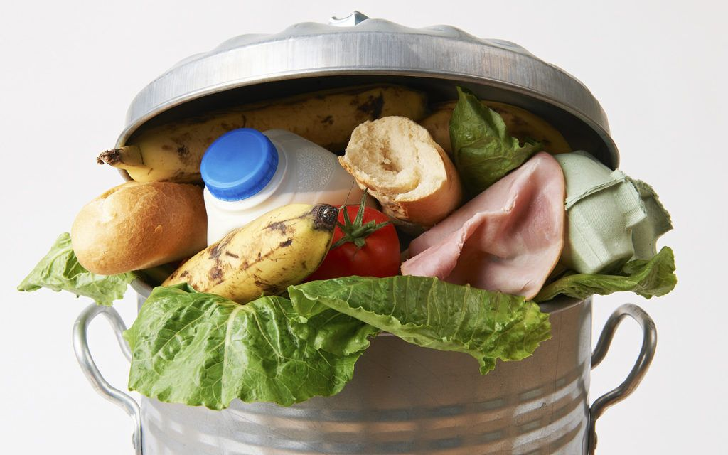 America's Food Waste Could Power 5.5 BILLION Heaters a Year