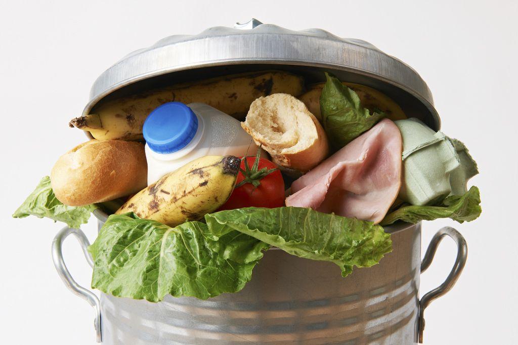 fresh food tossed in garbage