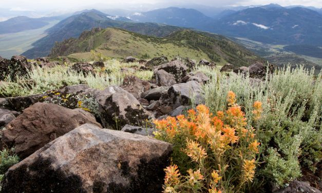 At Risk – 3.3 Million Acres of Public Land May Soon Be Up for Sale