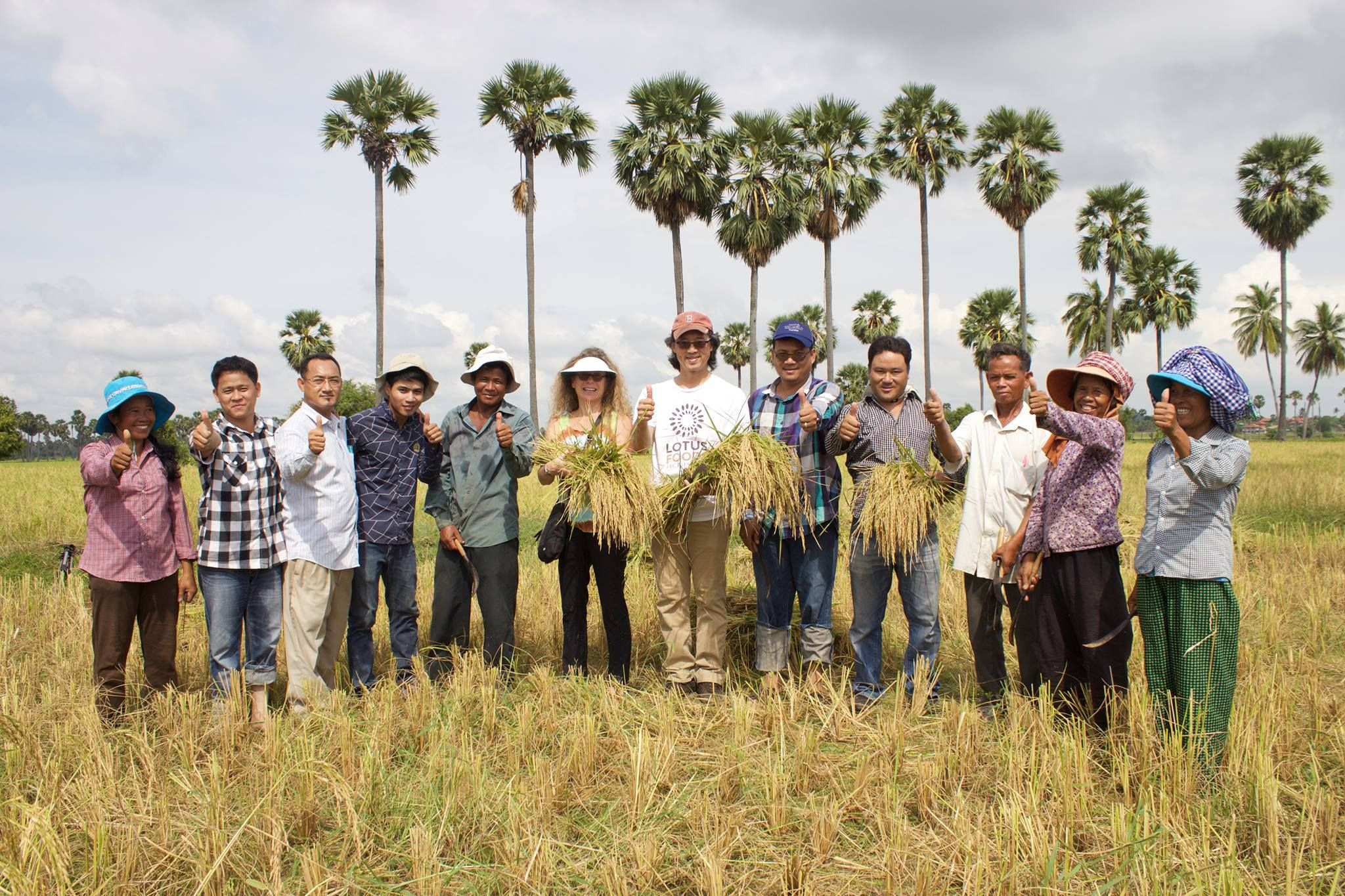 Sustainable rice that helps women workers