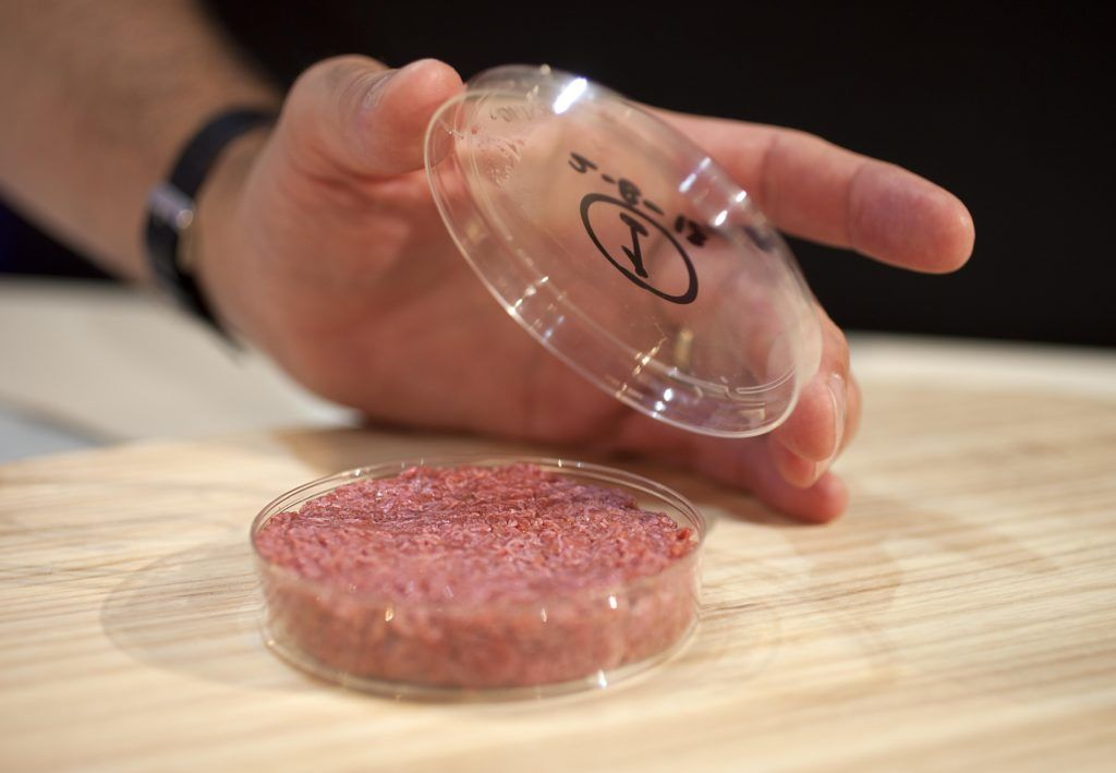 Lab-grown meat in petri dish.