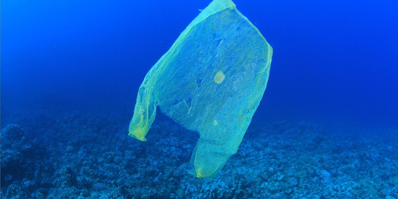 how to clean up all that plastic in the ocean