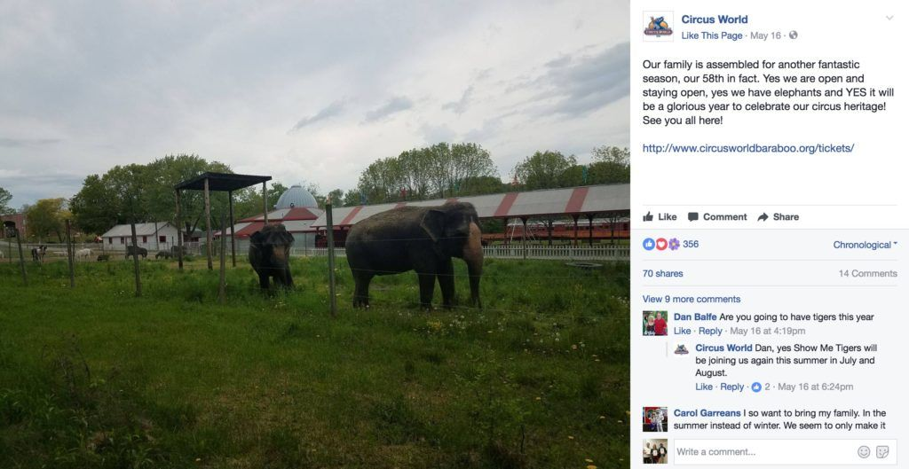 Elephants in captivity at Circus World, Baraboo WI