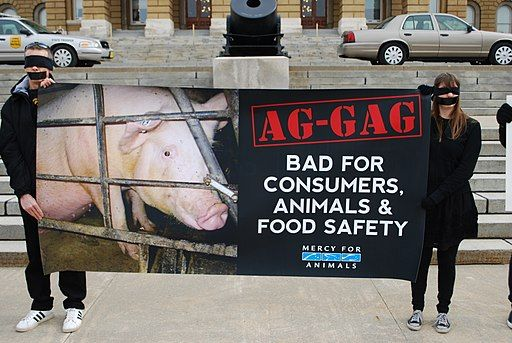 Activists protest 'ag-gag' laws.