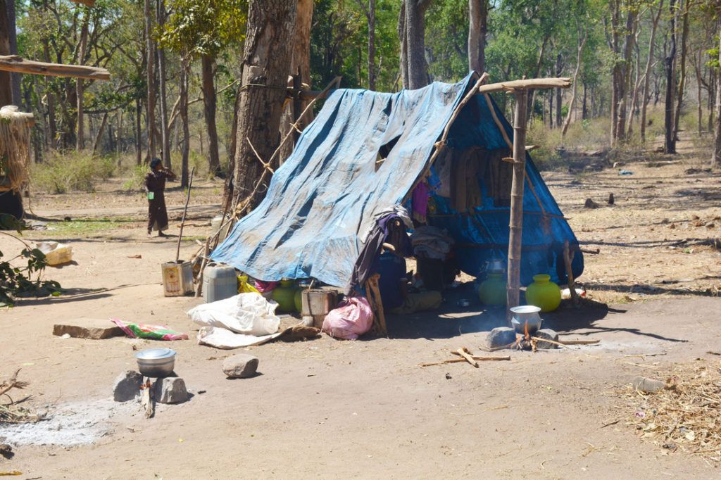 Mahouts live in poor conditions in Karnataka, India.