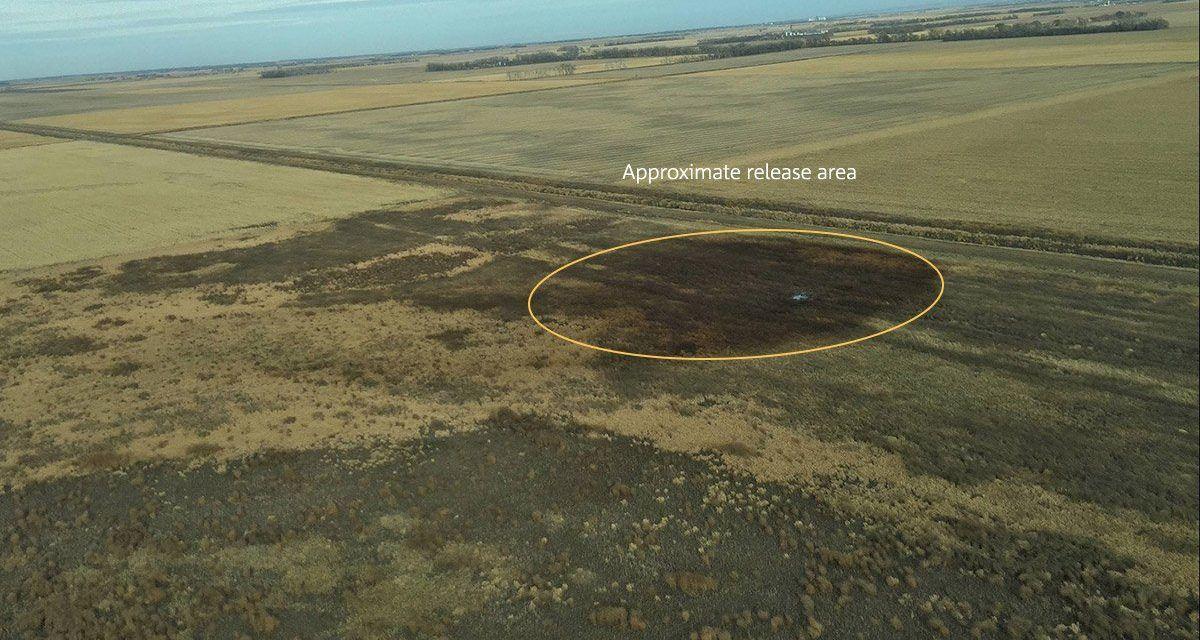 Keystone Pipeline Leaks Biggest Oil Spill in South Dakota's History