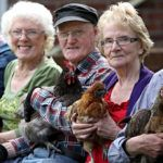 How Hens Are Transforming Lives At Retirement Homes