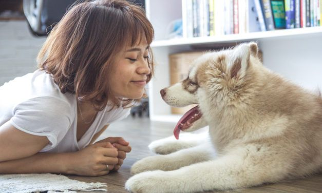 Having a Dog Makes You Live Longer, New Study Finds