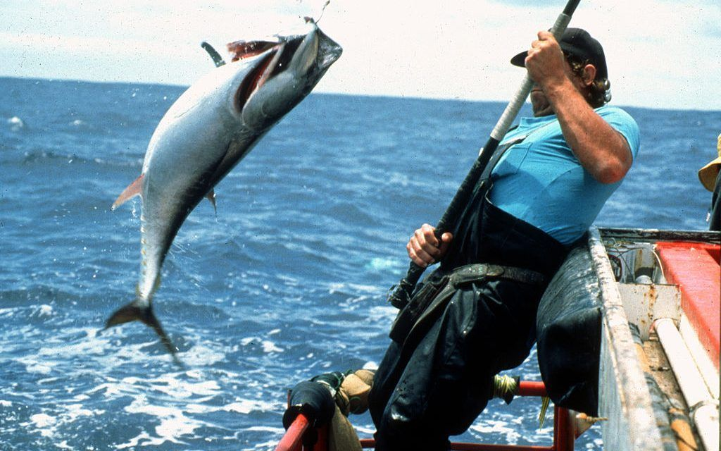This Fishing Association is Rewarding People for Catching Endangered Species