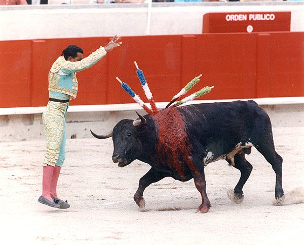 Bullfighting has Just been Banned in this Venezuelan City