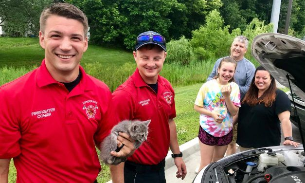 Hero Firefighters Disassemble Car Engine to Save Kitten Trapped Inside