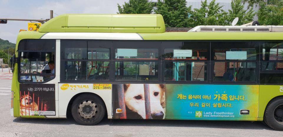 LFT Sponsors Bus Ad in S. Korea with Message that Dogs are Family, Not Food