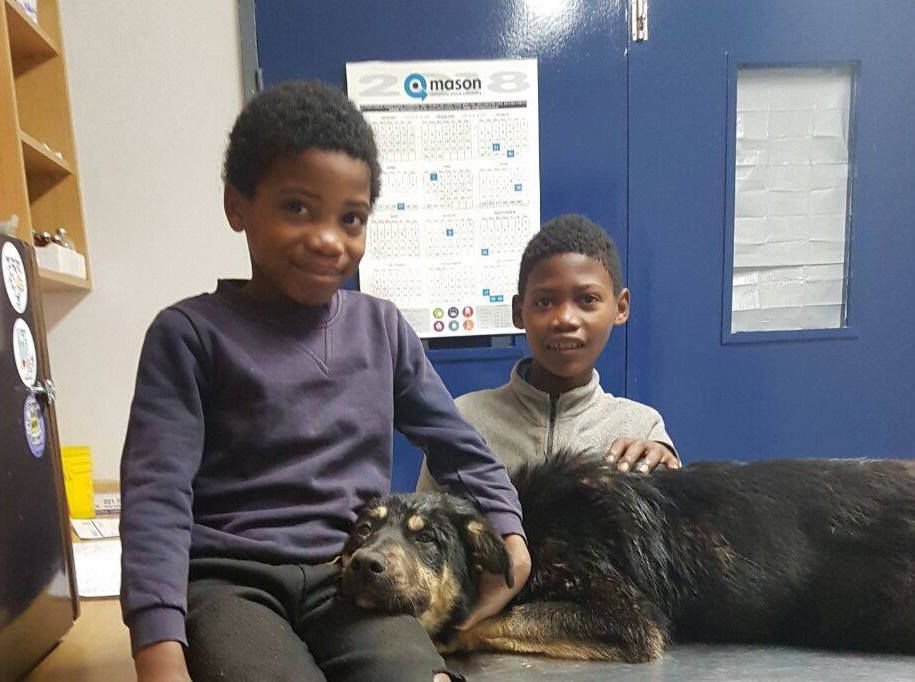 Two boys give up their shoes to save dog's life