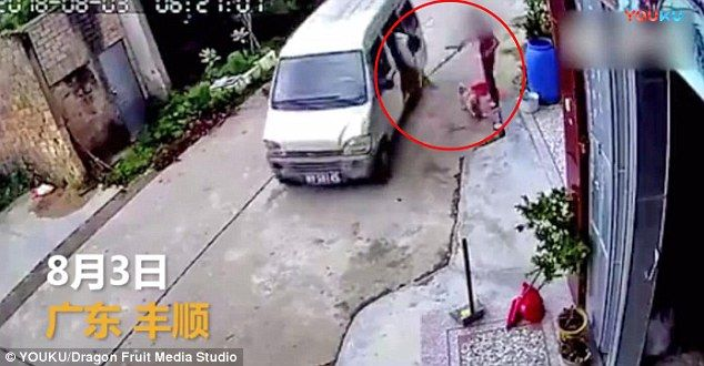 Woman Fights Off Dog Meat Thief with Broom to Save Beloved Pet