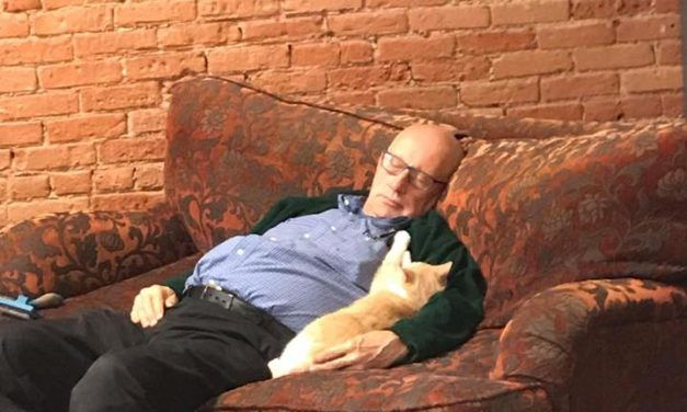 This 75-Year-Old Volunteer Takes Naps with Shelter Cats Every Day