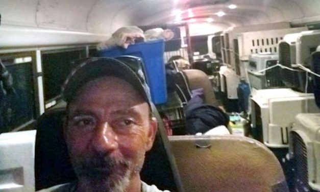 Man Drives School Bus Full of Shelter Dogs and Cats to Safety from Hurricane Florence