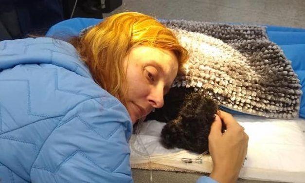 5-Pound Hero Dog Sacrifices Own Life to Save Family from Bear