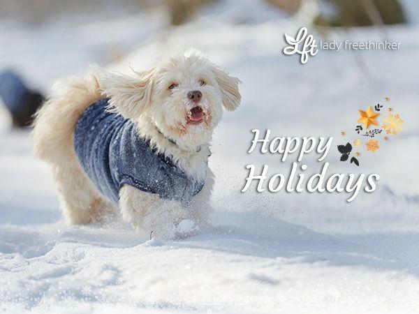 holiday snow dog e-card