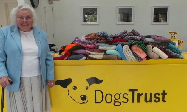 This 89-Year-Old Volunteer Has Knitted Hundreds of Sweaters to Keep Shelter Pups Warm