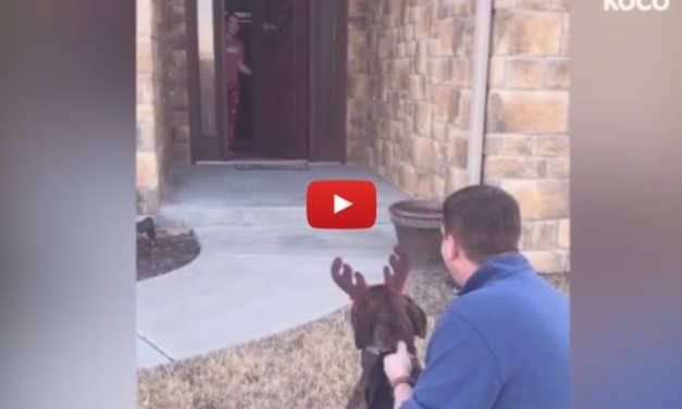 VIDEO: Daughter Just Can't Control Tears when Dad Adopts Her Favorite Shelter Dog for Christmas