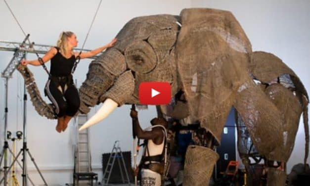 VIDEO: This Genius Circus Has 'Elephants,' but None of the Cruelty
