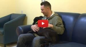 VIDEO: 'Miracle Dog' Survives Euthanasia and Gets Second Chance At Life