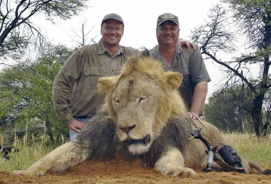 SIGN: Pass the CECIL Act to Stop Cruel Trophy Hunting