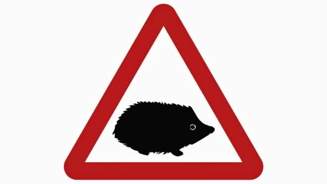 UK Introduces Hedgehog Road Sign to Protect 'Precious' Wildlife