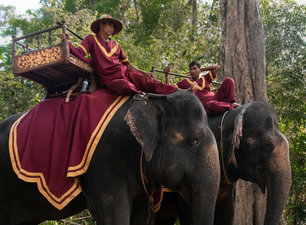 Elephant riding in Cambodia
