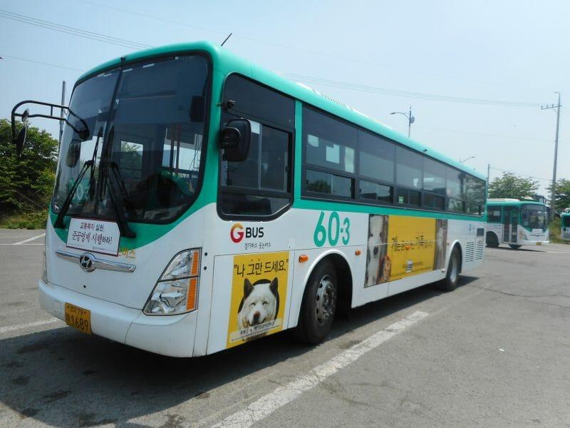 lady freethinker dog mewat korea bus ad