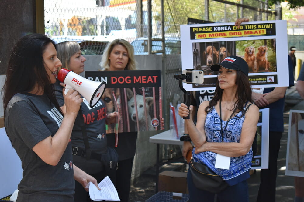 Nina Jackel lady freethinker dog meat protest