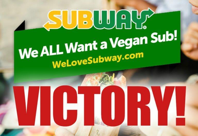 vegan subway meatball