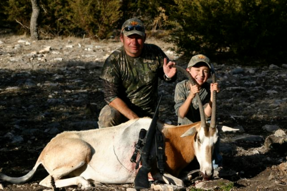 Trophy hunt oryx