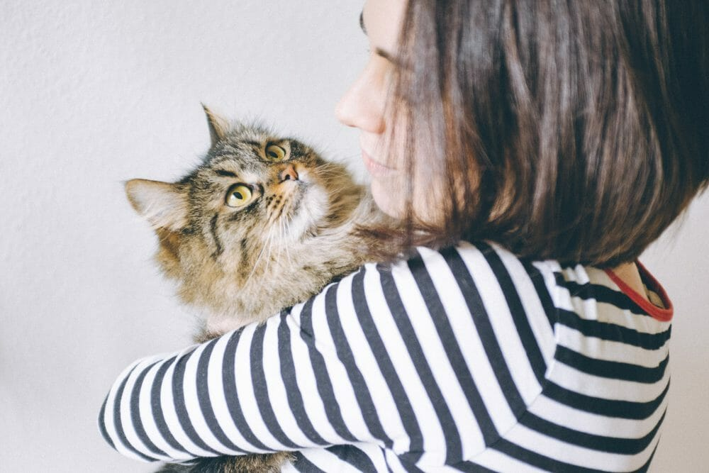 Cats love humans too!