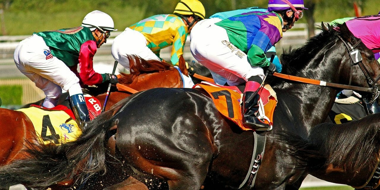 The 33rd Horse Since December Has Died At Santa Anita Racetrack
