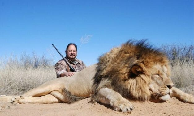 Sign: End All Barbaric Trophy Hunting In The UK