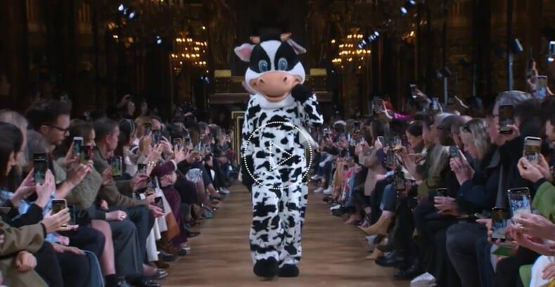 Stella cow catwalk