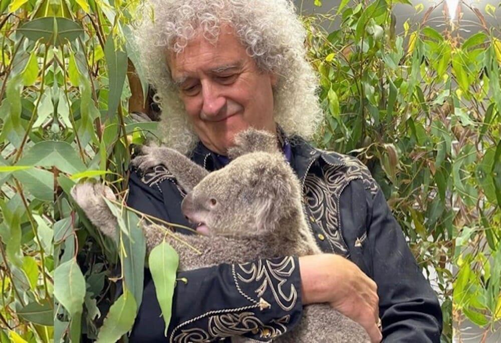 Brian May and koala
