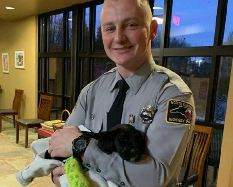 VIDEO: State Trooper Opens His Home to Unclaimed Puppy Injured in Car Crash