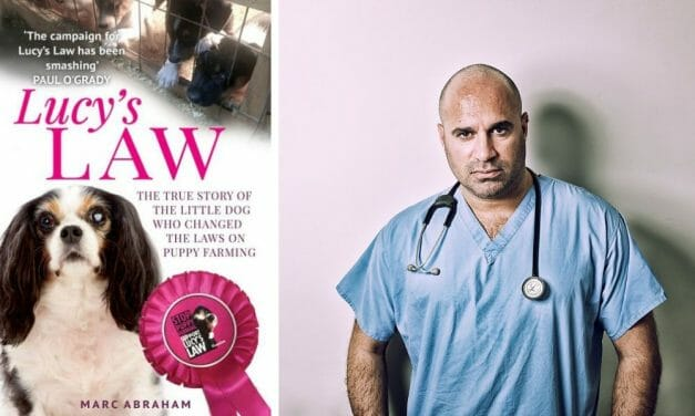 Book: 'Lucy's Law' Reveals How One Dog Helped End Puppy Farming in England