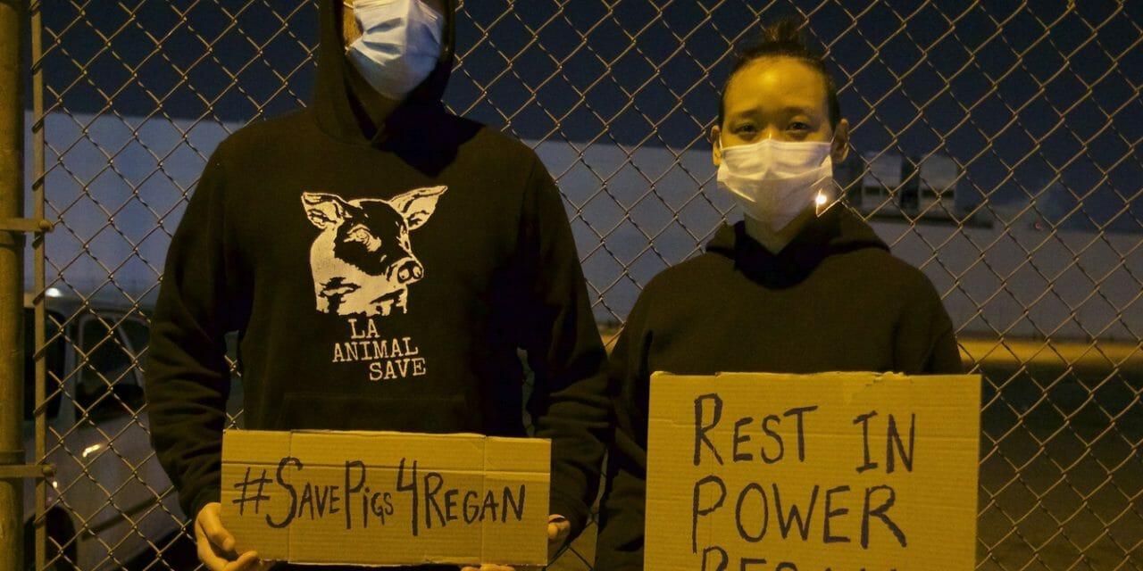 Joaquin Phoenix Honors the Memory of Slain Activist Regan Russell