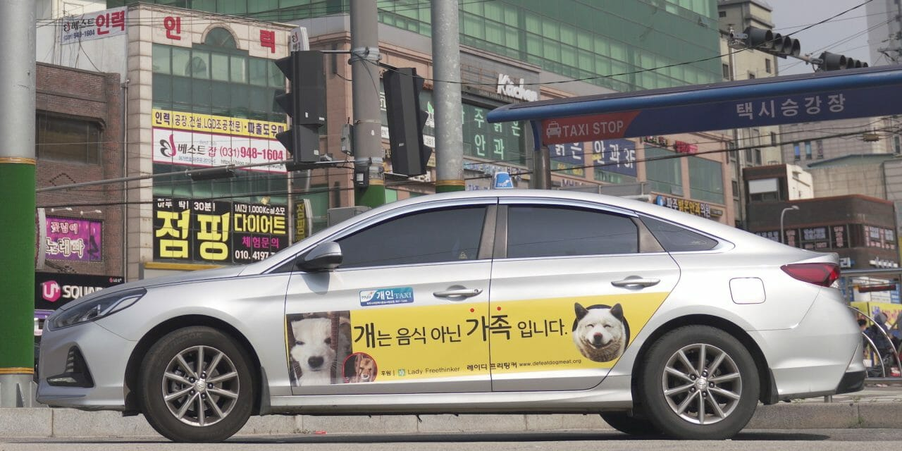 Lady Freethinker Sponsors Taxi Ads to End Korea's Cruel Dog Meat Trade