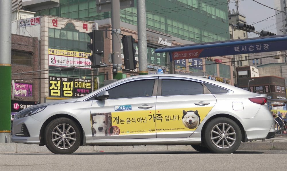 dog meat awareness ad on taxi